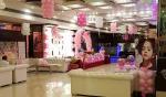 Royal Lush- Bright Shine Banquet Hall in Delhi Photos