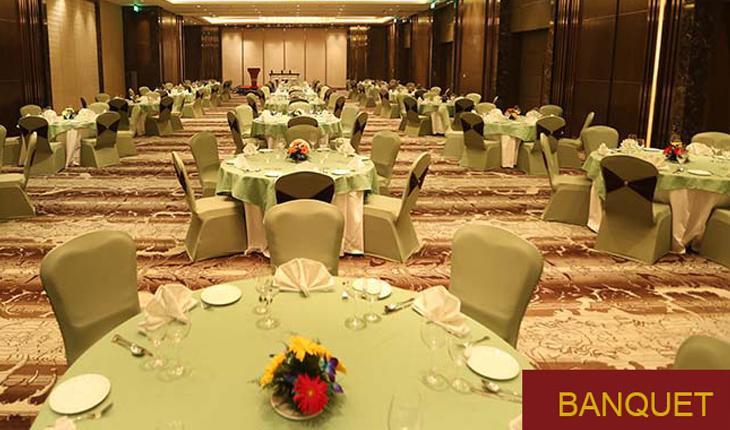 Pride Plaza Hotel Banquet Hall in Delhi Photos